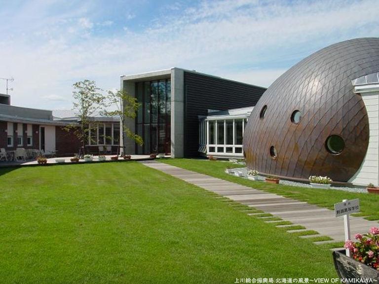 絵本の館 ゴールデンウィークイベント|北海道の「今」をお届け Domingo -ドミンゴ-
