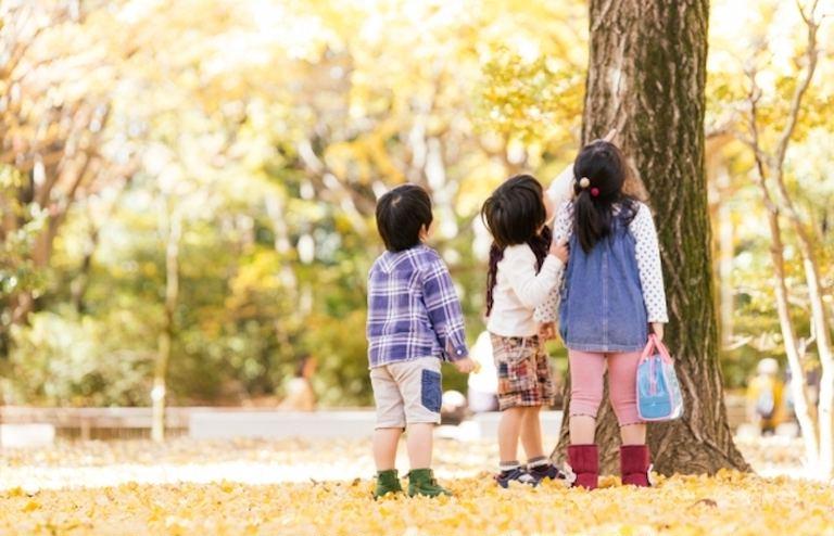 2021秋おけと森林ウォーク「おけと市街一望ハイキング」※町民限定|北海道の「今」をお届け Domingo -ドミンゴ-