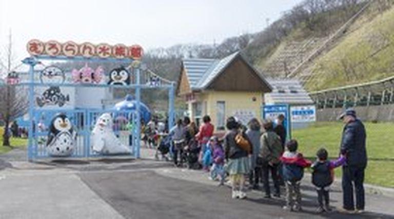 市立室蘭水族館 オープン|北海道の「今」をお届け Domingo -ドミンゴ-