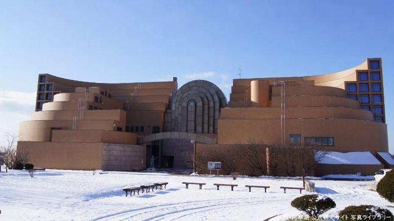釧路市立博物館 「標本は時代を超えて~明治・大正期に採集された植物」|北海道の「今」をお届け Domingo -ドミンゴ-