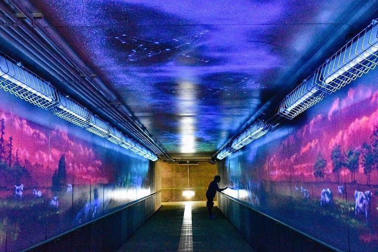 猿払村の幻想的な地下道など【北海道ミライノート(18)】|Domingo