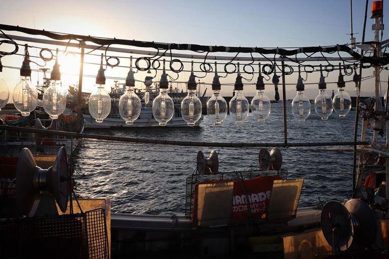 函館市のイカ釣り漁船 など【北海道ミライノート(37)】|Domingo