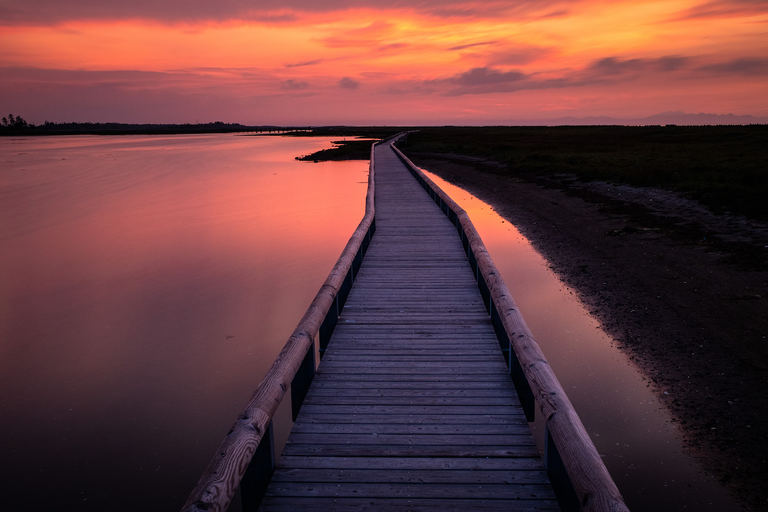 世界中のトラベラーを癒やす、最果ての自然と美食の絶景海道。【シーニックバイウェイ北海道(4)】