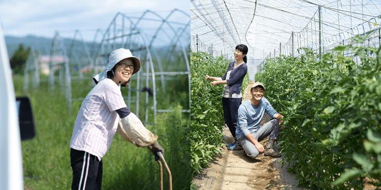 仕事が生活の延長線上に。栗山町、壮瞥町で農業を仕事にする【北の大地のジョブサロン(2)】