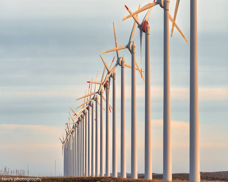 浜の風を受けながらまっすぐに立つ風車。「28基の風車(幌延町)」など 【北海道ミライノート (55)】|Domingo