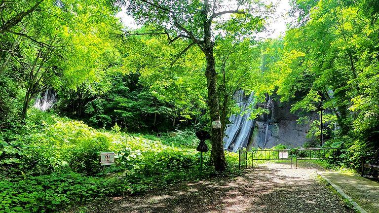 糸をたらしたような優雅な姿で人気「鱒見の滝」|Domingo