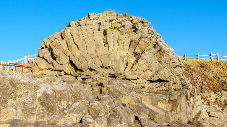 世界的にも珍しい巨大ホイールストーン!根室市花咲岬にある「車石」とは? Domingo
