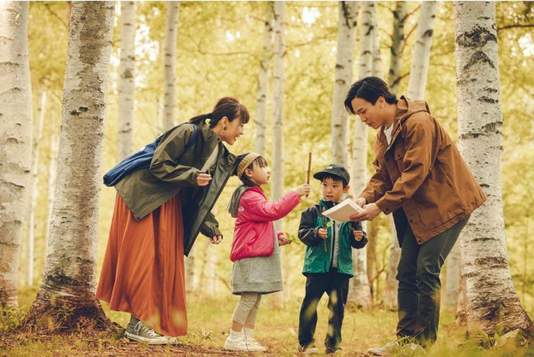 星野リゾート リゾナーレトマム「森遊びデビュープログラム」 北海道の「今」をお届け Domingo -ドミンゴ-