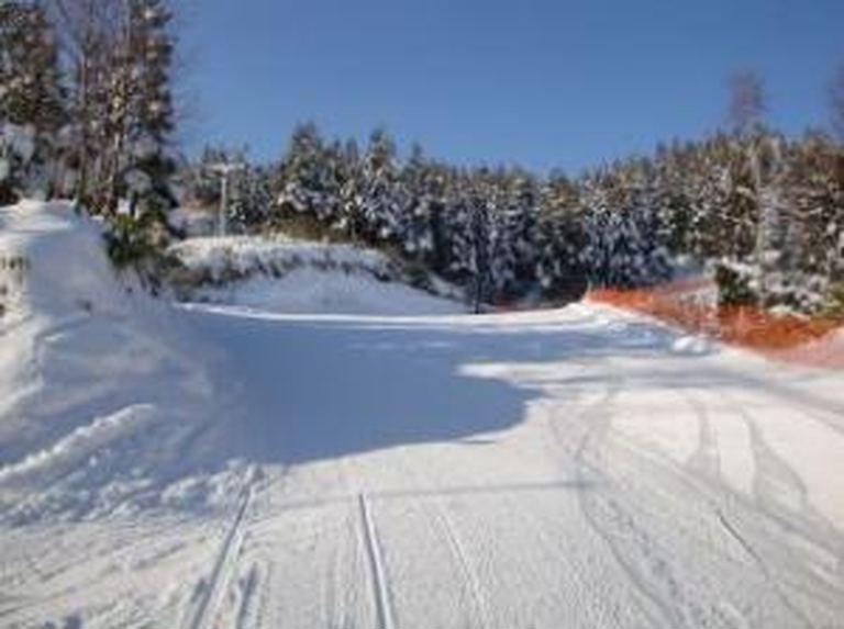 八雲町営スキー場 北海道の「今」をお届け Domingo -ドミンゴ-